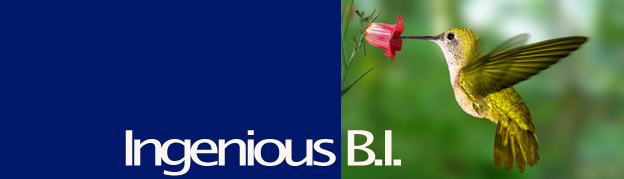 Cognos Business Intelligence & Data Warehousing Consultancy from Ingenious B.I.